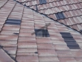 Roof Painting (2)